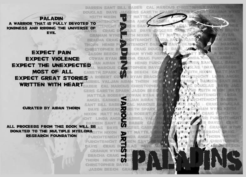 paladins wrap around
